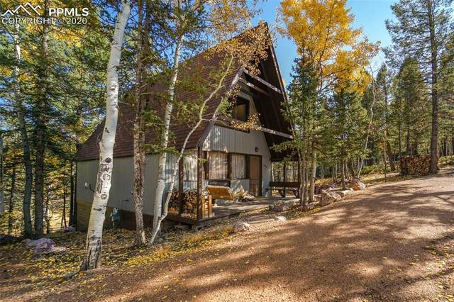 246 Pawutsy Road, Florissant, CO 80816 (#3974735) :: Fisk Team, RE/MAX Properties, Inc.