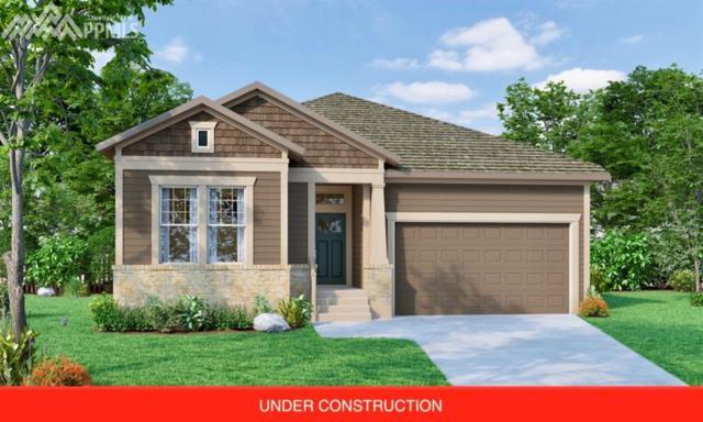 6321 Rowdy Drive, Colorado Springs, CO 80924 (#3977094) :: 8z Real Estate