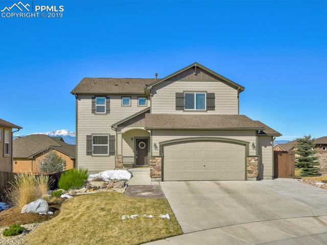 6568 Sawbuck Road, Colorado Springs, CO 80923 (#3978592) :: The Treasure Davis Team