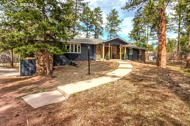 4711 Cheyenne Drive, Larkspur, CO 80118 (#3980574) :: 8z Real Estate
