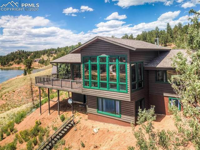 109 Spring Valley Circle, Divide, CO 80814 (#3981900) :: The Daniels Team