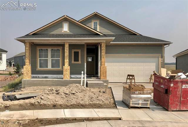 6572 Twin Falls Court, Colorado Springs, CO 80924 (#3985154) :: Action Team Realty