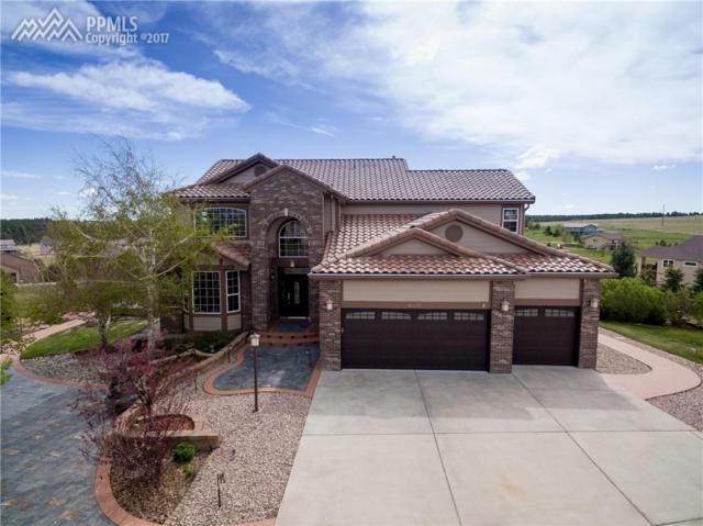 16635 Cherry Vista Court, Colorado Springs, CO 80921 (#3985335) :: 8z Real Estate