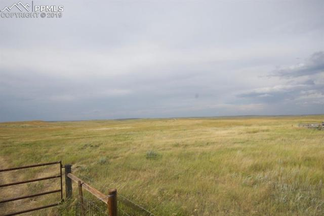 0 County 125 Road, Simla, CO 80835 (#3986075) :: Action Team Realty