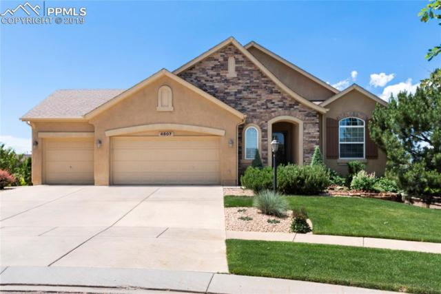 4807 Alberta Falls Way, Colorado Springs, CO 80924 (#3986155) :: The Daniels Team