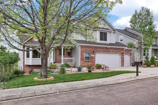135 Odessa Place, Colorado Springs, CO 80906 (#3987763) :: The Daniels Team