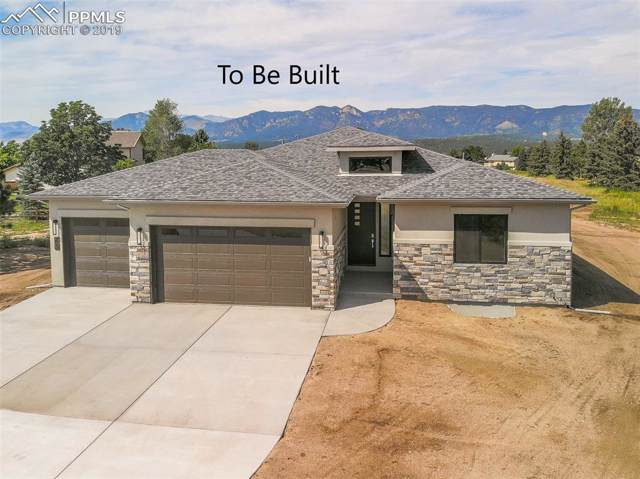 14149 Stone Eagle Place, Colorado Springs, CO 80921 (#3987795) :: The Daniels Team