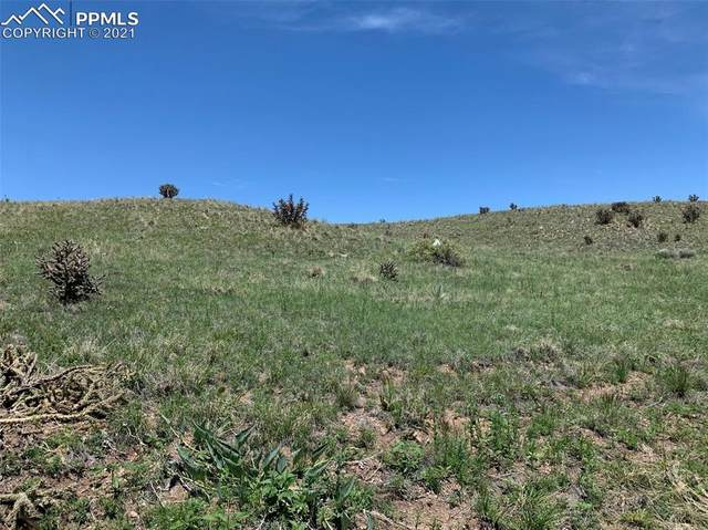 7110 Ghost Walk Point, Fountain, CO 80817 (#3988181) :: Tommy Daly Home Team