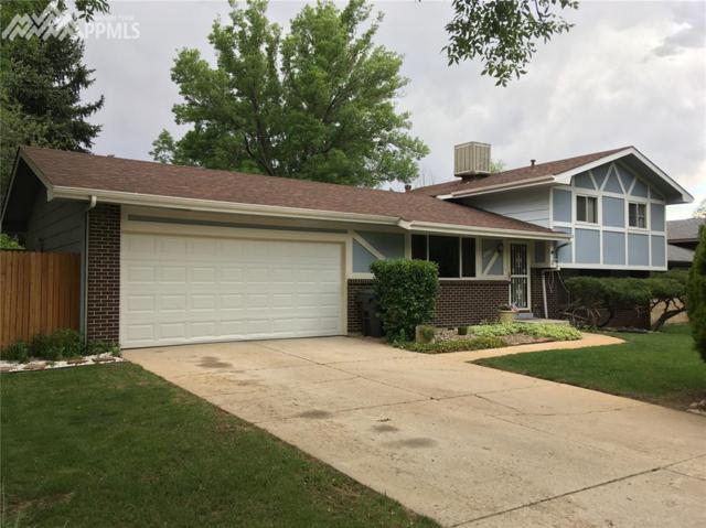 4269 N Hammock Drive, Colorado Springs, CO 80917 (#3991547) :: 8z Real Estate
