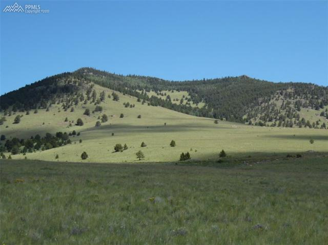 381 Lakeview Trail, Guffey, CO 80820 (#3991667) :: The Hunstiger Team