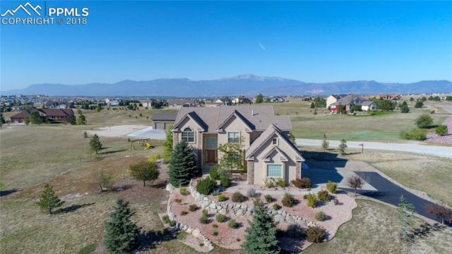 9767 Cairngorm Way, Colorado Springs, CO 80908 (#3992481) :: 8z Real Estate