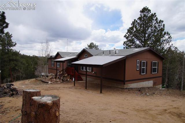488 Shavano Creek Trail, Florissant, CO 80816 (#3994130) :: Tommy Daly Home Team