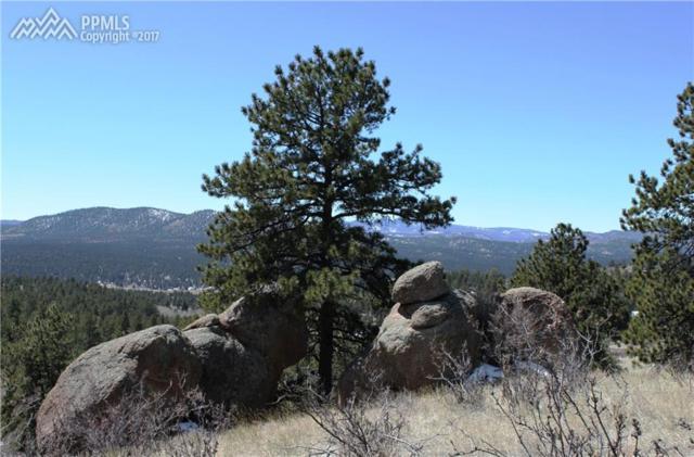 95 Navajo Trail, Florissant, CO 80816 (#3999948) :: 8z Real Estate