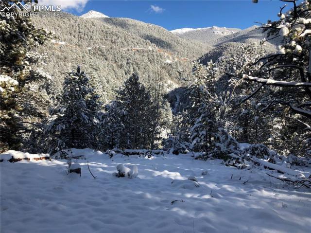 370 Valley Road, Divide, CO 80814 (#4000371) :: The Peak Properties Group