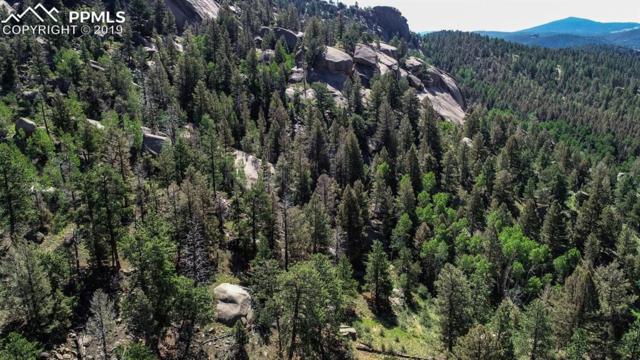 235 Hay Creek Road, Florissant, CO 80816 (#4001390) :: The Peak Properties Group