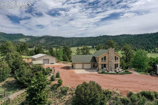 2235 Autumn Creek Drive, Canon City, CO 81212 (#4001497) :: The Treasure Davis Team