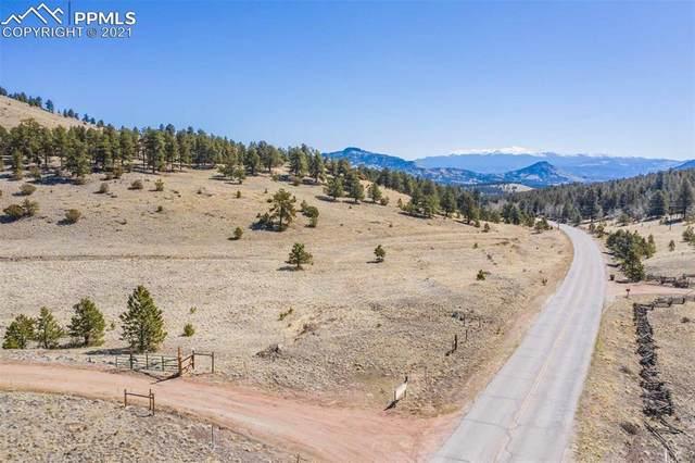 3771 County Road 102, Guffey, CO 80820 (#4006538) :: CC Signature Group