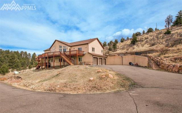 903 S Forty Road, Woodland Park, CO 80863 (#4010657) :: The Dunfee Group - Keller Williams Partners Realty