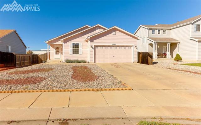7625 Barn Owl Drive, Fountain, CO 80817 (#4010793) :: 8z Real Estate