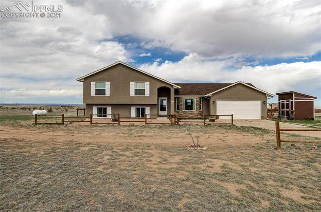 6110 Straight Arrow Point, Fountain, CO 80817 (#4012548) :: Tommy Daly Home Team