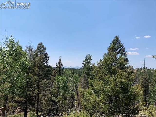 36 Chalk Circle Trail, Florissant, CO 80816 (#4012971) :: Action Team Realty