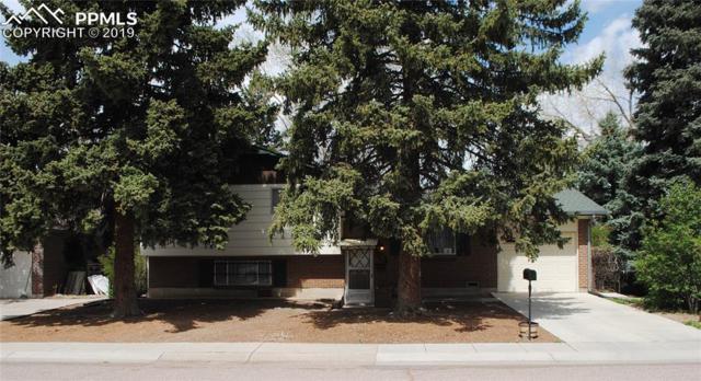 3618 Anemone Circle, Colorado Springs, CO 80918 (#4013697) :: Fisk Team, RE/MAX Properties, Inc.