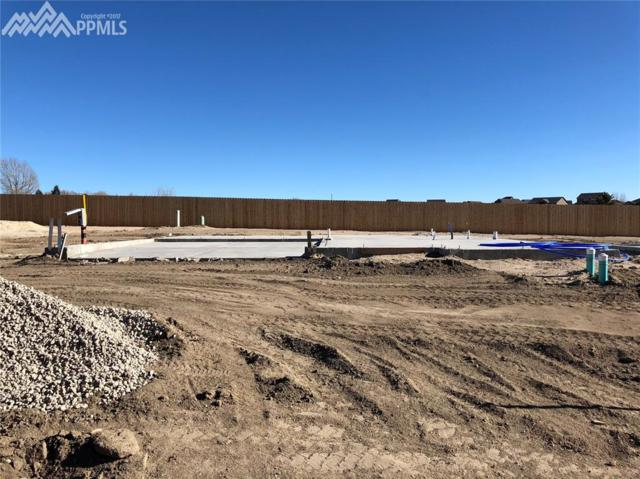 7418 Cat Tail Creek, Colorado Springs, CO 80923 (#4014235) :: 8z Real Estate