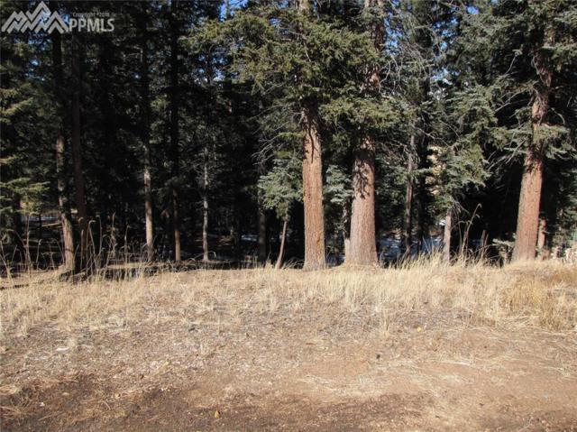 240 Iron Eagle Point, Woodland Park, CO 80863 (#4017340) :: Jason Daniels & Associates at RE/MAX Millennium