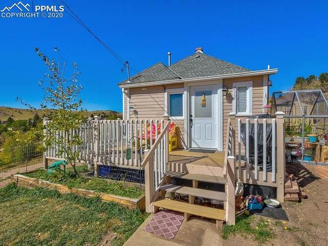 232 E Golden Avenue, Cripple Creek, CO 80813 (#4019143) :: 8z Real Estate