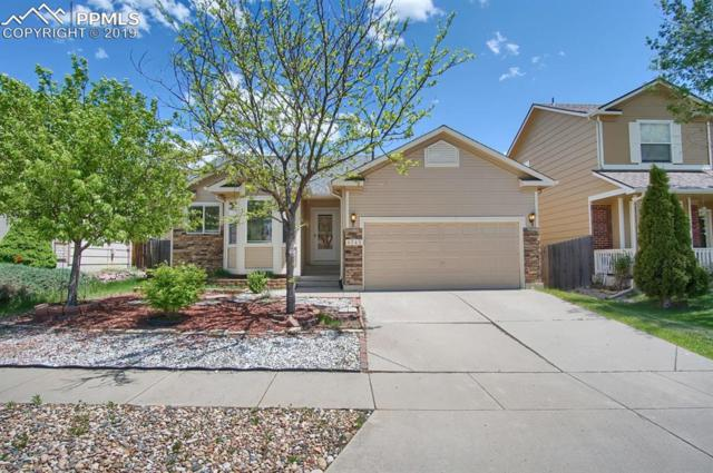 4243 Round Hill Drive, Colorado Springs, CO 80922 (#4022005) :: The Peak Properties Group