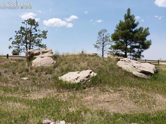24935 Cave Spring Trail, Elbert, CO 80106 (#4022574) :: 8z Real Estate