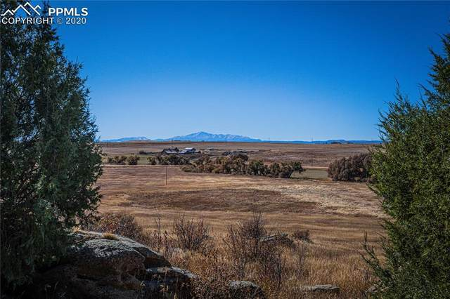 11535 Cave Spring Road, Franktown, CO 80116 (#4028567) :: Tommy Daly Home Team