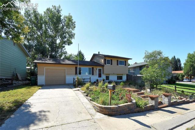 4937 Artistic Place, Colorado Springs, CO 80917 (#4032875) :: Colorado Home Finder Realty