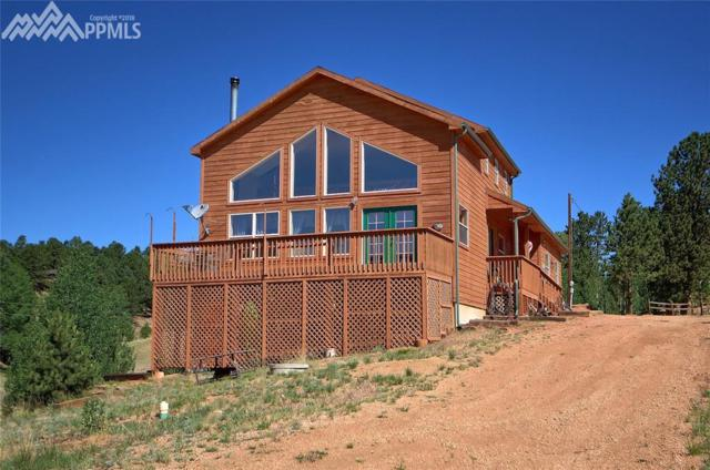 1229 Twin Lakes Drive, Divide, CO 80814 (#4038142) :: Jason Daniels & Associates at RE/MAX Millennium