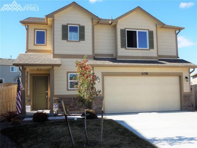 11776 Sedge Court, Peyton, CO 80831 (#4039023) :: 8z Real Estate