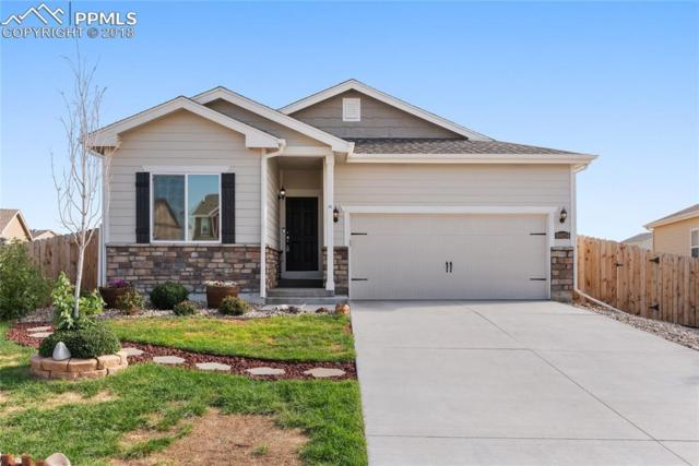 10024 Thunderbolt Trail, Colorado Springs, CO 80925 (#4039899) :: Action Team Realty