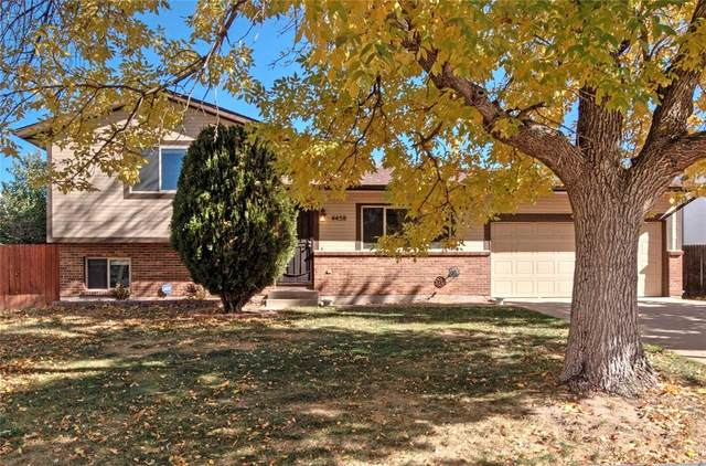 4458 Lancaster Drive, Colorado Springs, CO 80916 (#4039994) :: 8z Real Estate