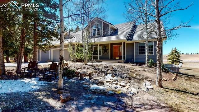 191 Joshua Road, Divide, CO 80814 (#4041677) :: Colorado Home Finder Realty