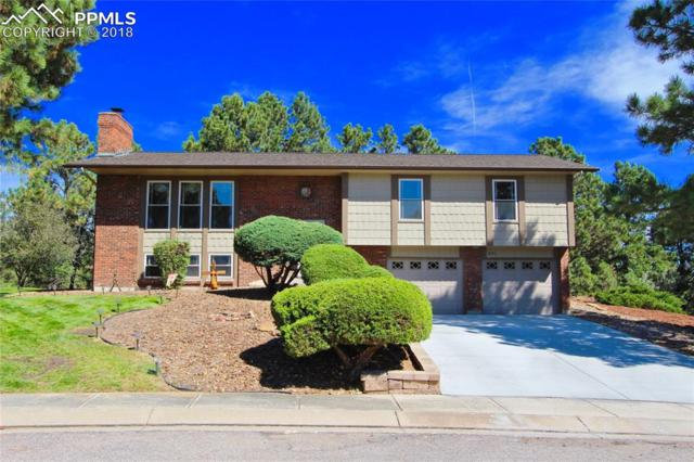 271 Dolomite Drive, Colorado Springs, CO 80919 (#4042411) :: Action Team Realty