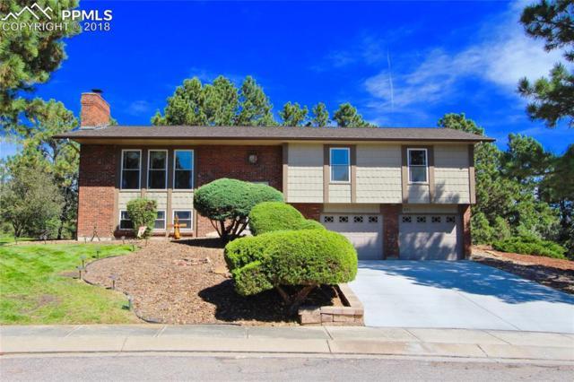 271 Dolomite Drive, Colorado Springs, CO 80919 (#4042411) :: 8z Real Estate