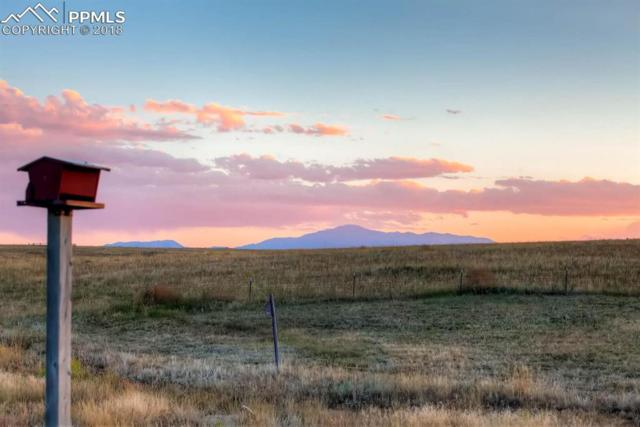 11275 Pony Express Lane, Elbert, CO 80106 (#4042916) :: Jason Daniels & Associates at RE/MAX Millennium