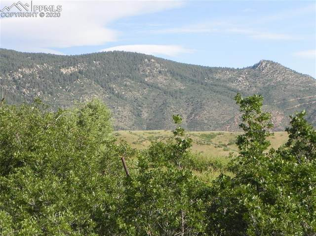 6037 Spy Glass Court, Larkspur, CO 80118 (#4046197) :: Action Team Realty