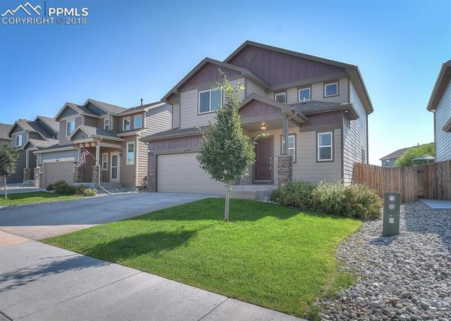 6209 Wood Bison Trail, Colorado Springs, CO 80925 (#4046826) :: Harling Real Estate