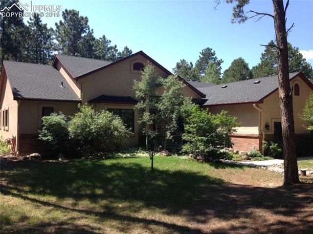 215 Pinewood Loop, Monument, CO 80132 (#4046844) :: 8z Real Estate
