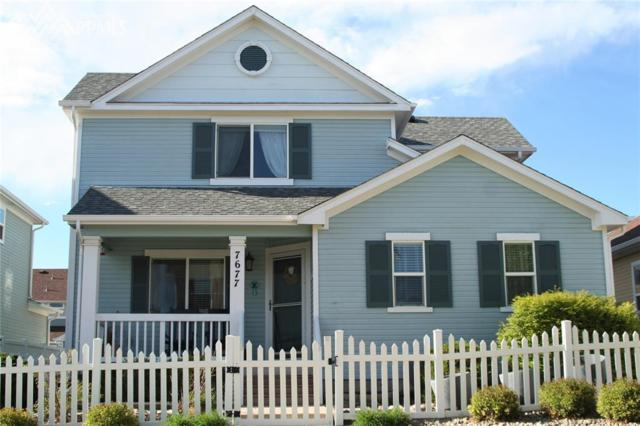 7677 Firehawk Lane, Colorado Springs, CO 80923 (#4048523) :: 8z Real Estate