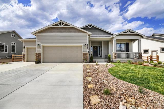 3046 Waterfront Drive, Monument, CO 80132 (#4049143) :: Fisk Team, RE/MAX Properties, Inc.