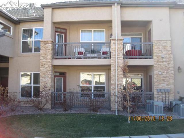 555 Cougar Bluff Point #108, Colorado Springs, CO 80906 (#4051098) :: The Daniels Team