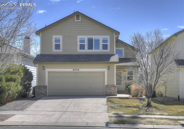 6014 Desoto Drive, Colorado Springs, CO 80922 (#4053998) :: The Daniels Team