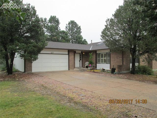 650 Big Valley Drive, Colorado Springs, CO 80919 (#4056229) :: 8z Real Estate