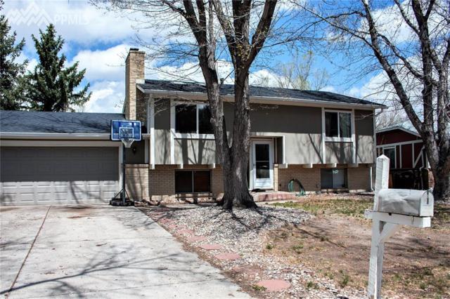 4530 Adieu Circle, Colorado Springs, CO 80917 (#4056702) :: 8z Real Estate
